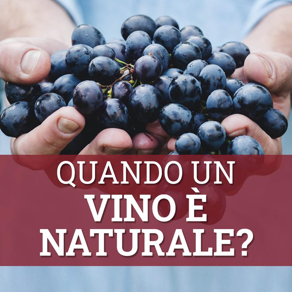 quando un vino è naturale