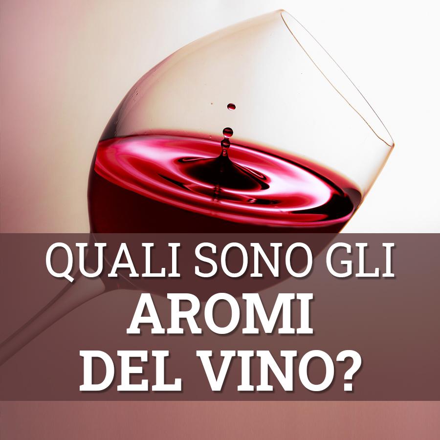 quali sono gli aromi del vino